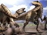Safari prehistorique